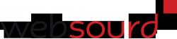 logo websourd