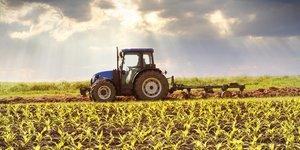 agroécologique, agriculture