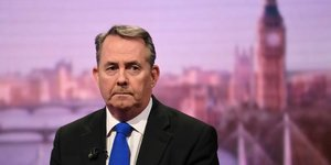 Liam Fox, Brexit, ministre du commerce,
