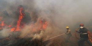 Violents feux de foret dans le centre du portugal
